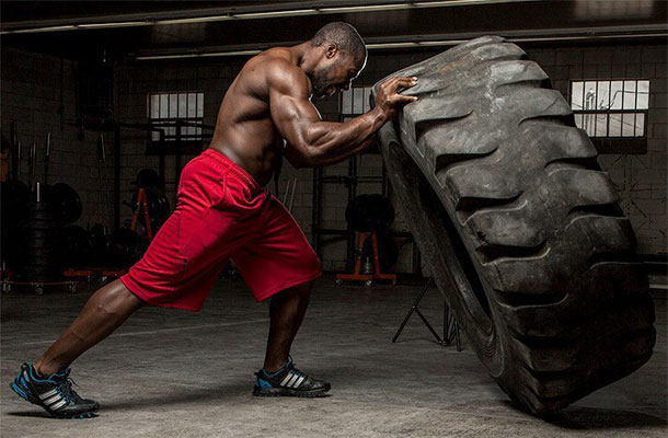 آناتومی رشد عضلات بدن