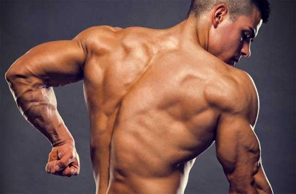 بهترین تمرینات برای پشت بازو
