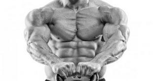 افزایش فیبر عضلانی با تمرین